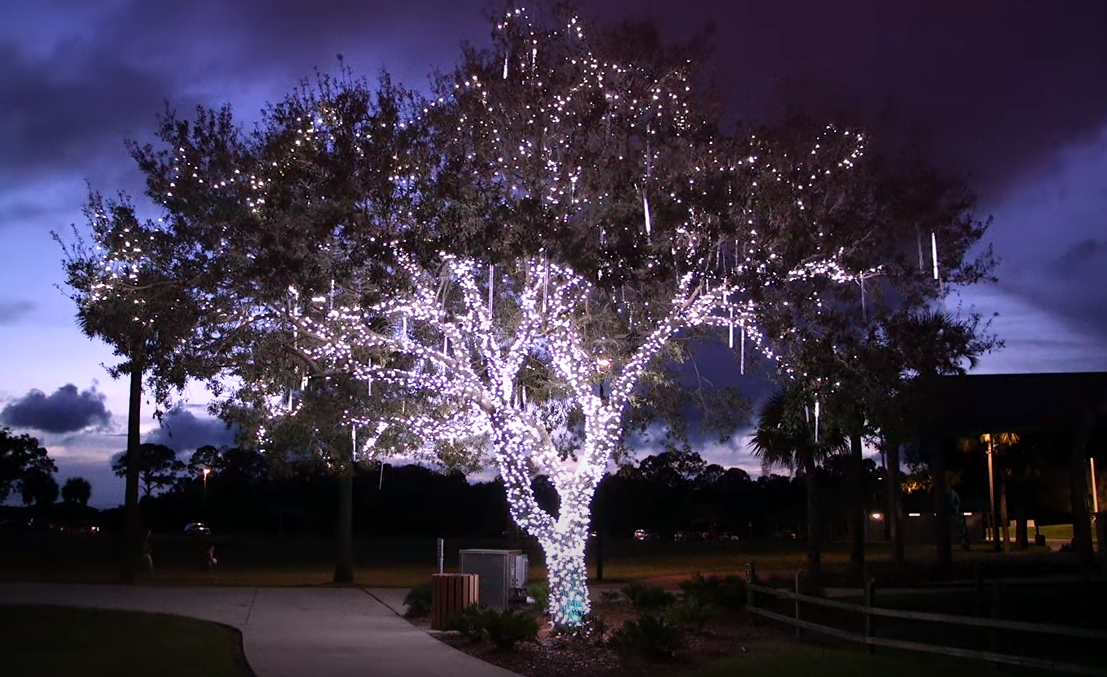 Lights of Love Tree
